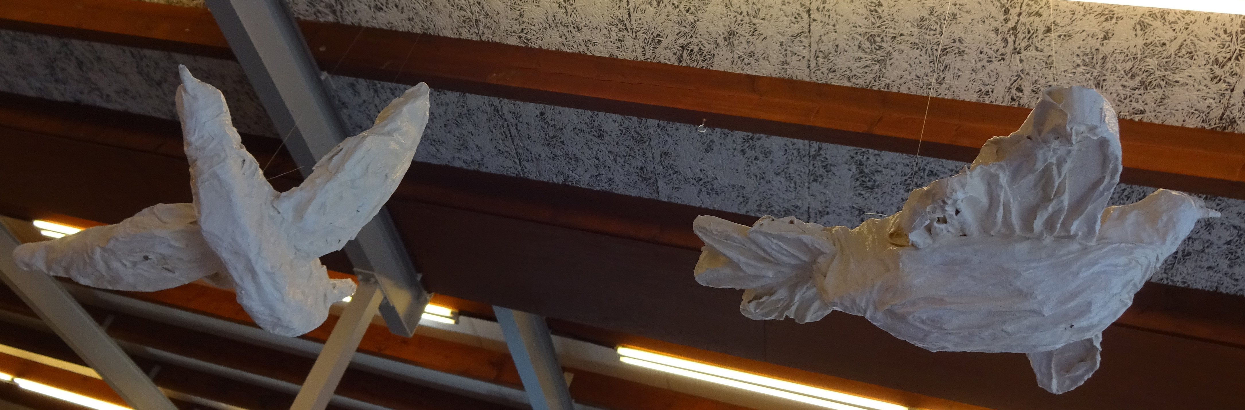 Vrije-vogels-4-door-Annelies-Leeflang